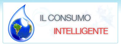 Consumo Intelligente